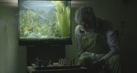 foto aquarium